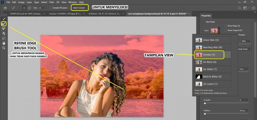 cara menyeleksi rambut yang susah dengan select and mask photoshop cc 2020 sampai mahir