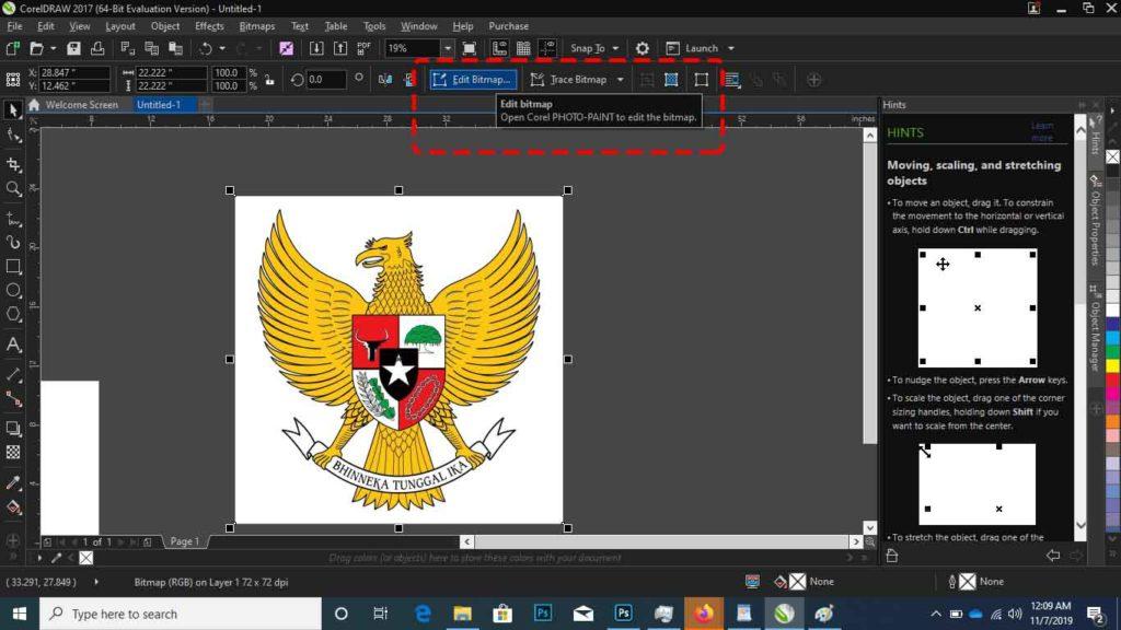 Cara Menghilangkan Background Di Corel untuk edit bitmap