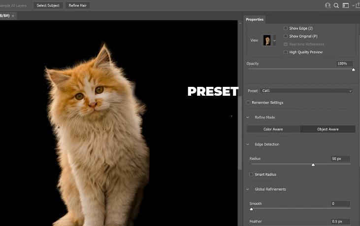 kita bisa buat preset select and mask di photoshop cc 2021