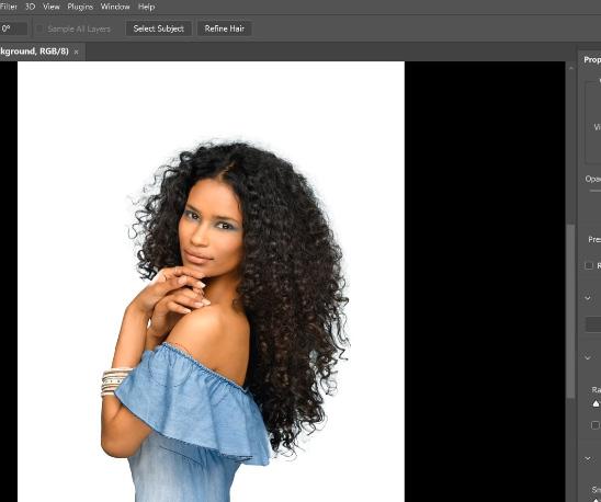 refine hair merupakan fitur tambahan photoshop cc 2021
